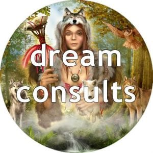 Dream Consults